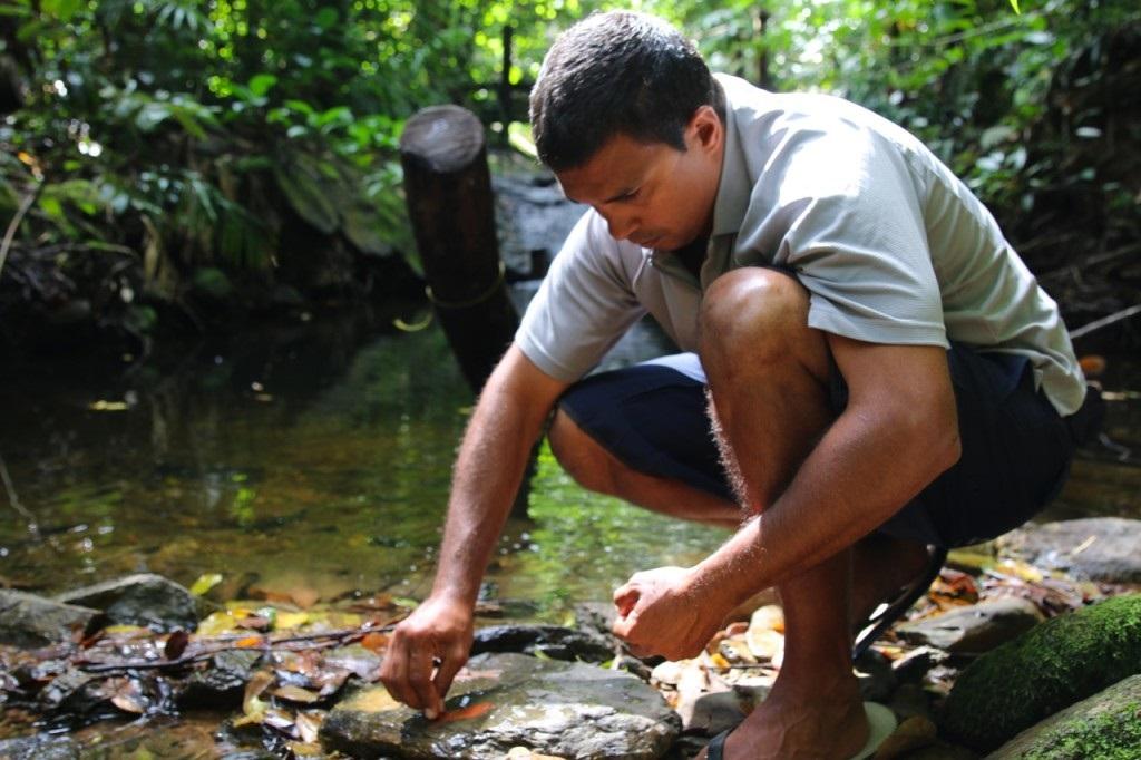 aboriginal cultural tours kuku yalanji daintree rainforest