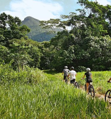 cape tribulation tours in the daintree rainforest electric bike tours