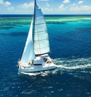 great barrier reef cruises sailing daintree rainforest mackay reef