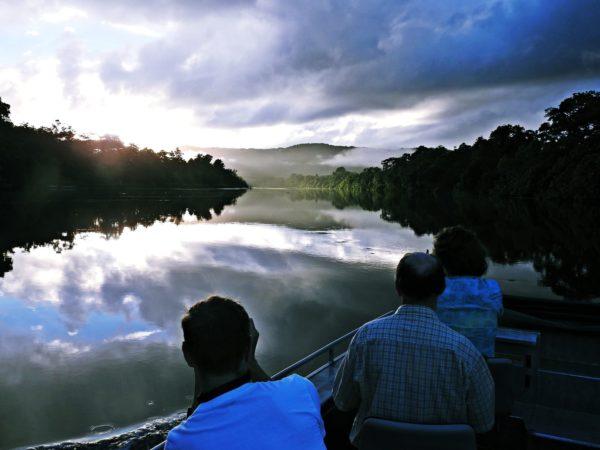 daintree river cruise birdwatching croc spotting photography tours